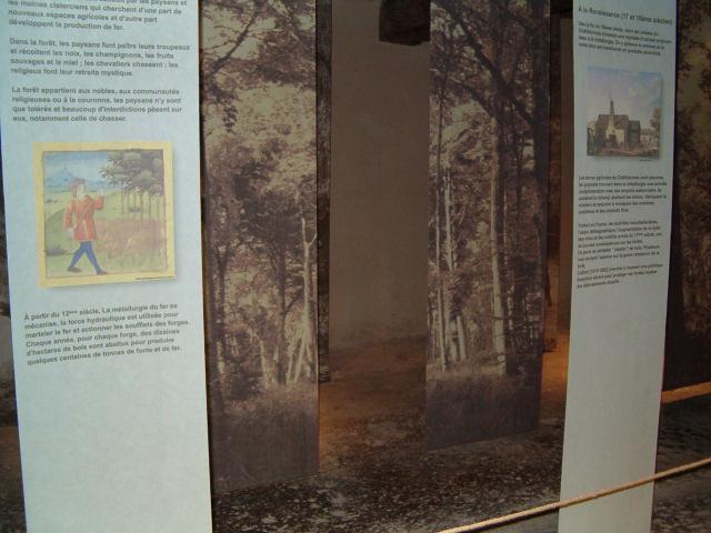 Maison de la Forêt 02